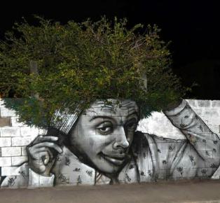 與樹同行的Graffiti Tree塗鴉概念